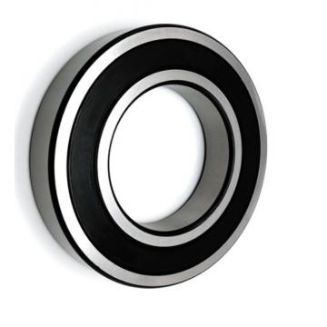 SKF NSK NTN Koyo NACHI Timken Taper Roller Bearing P5 Quality 6919 16019 6019 6219 6319 6820 6920 Zz 2RS Rz Open Deep Groove Ball Bearing